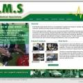 www.emeds.com